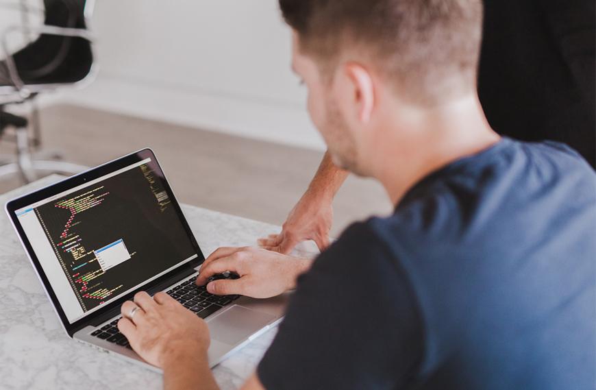 Web developer for rent